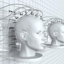 Функции сознания